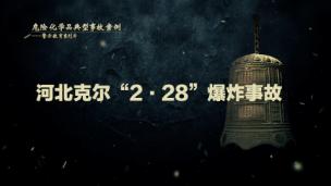 """2012年河北省石家庄市克尔KU体育投注有限公司""""2·28""""重大爆炸事故"""
